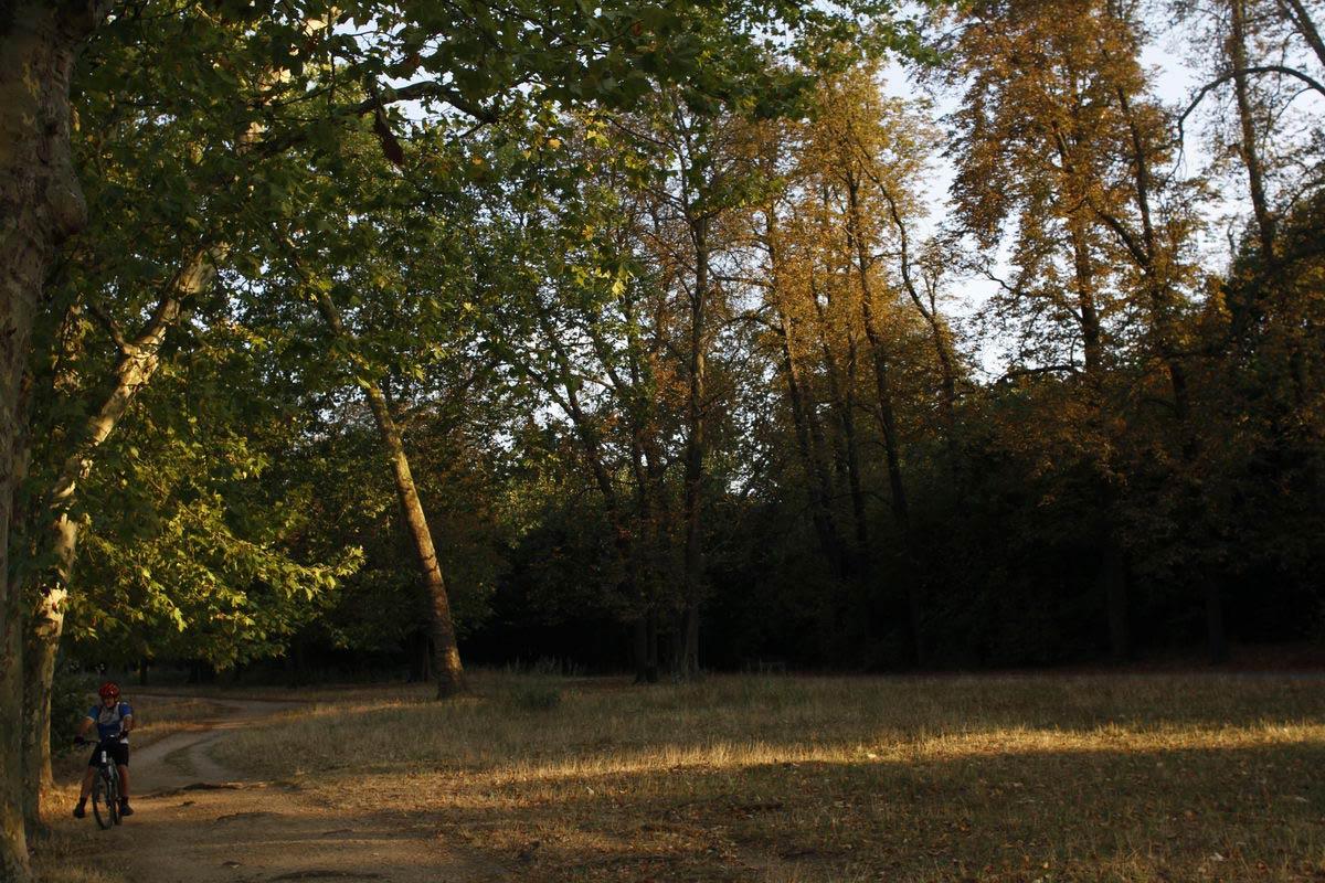 Bois-de-Vincennes, 040912Ph MK