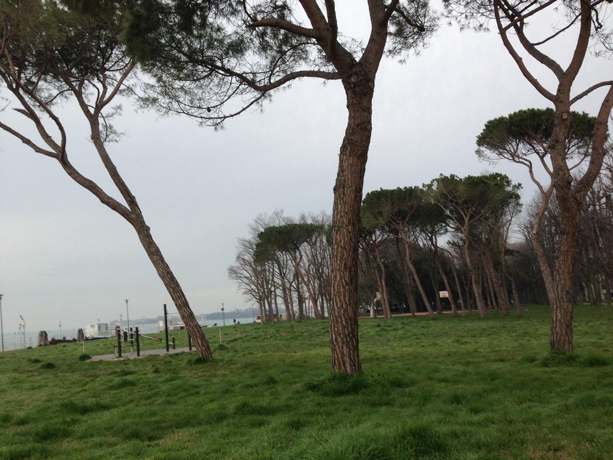 A l'est, près de Viale Vittorio Veneto, Venise 03 2013, Ph. Moctar KANE.