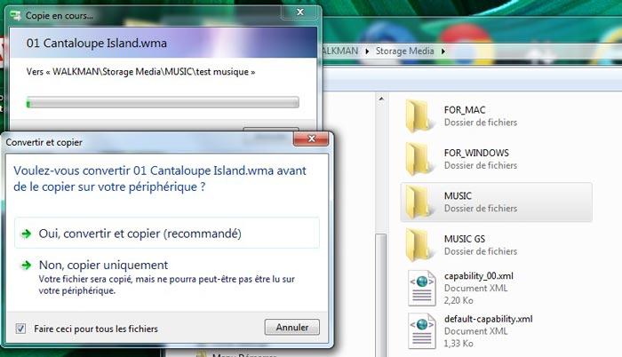 Lors du transfert des fichiers vers le Sony NWZ-W273, il faudra peut-être en convertir certains.