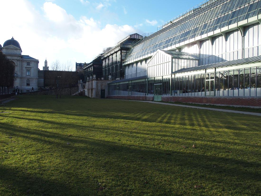Test Olympus Stylus 1 : dans le Jardin des Plantes, Paris 2013. Ph. Moctar KANE.