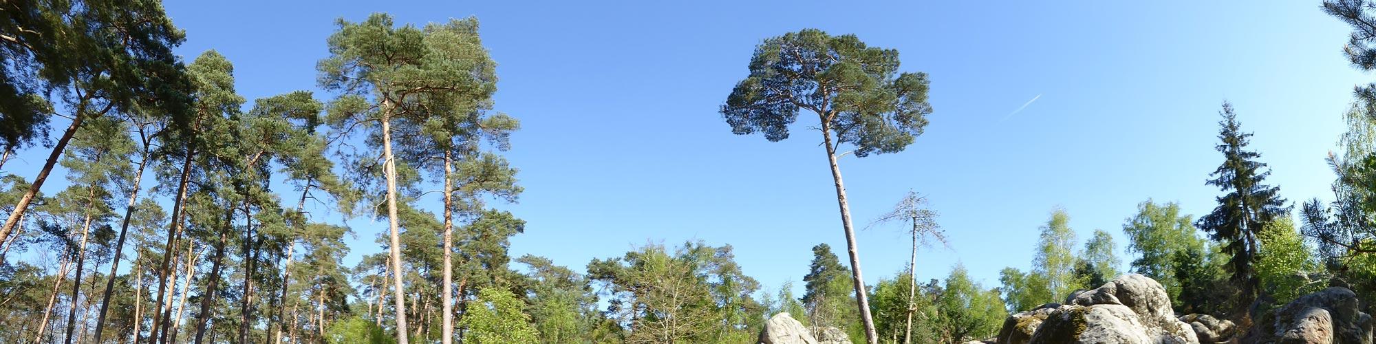 Panoramique réalisée avec le Panasonic TZ60, 04 2014. Ph. Moctar KANE.