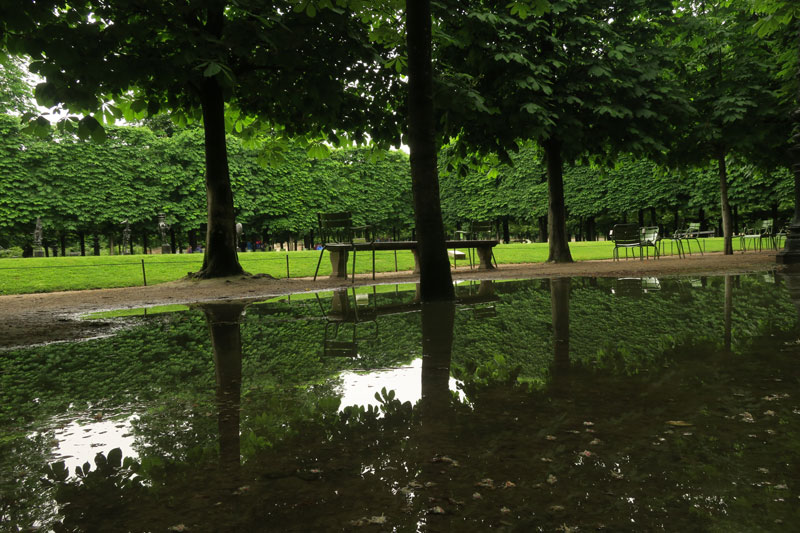 Le Jardin des Tuileries, un jour de pluie, Paris 05 2016. Ph. Moctar KANE.
