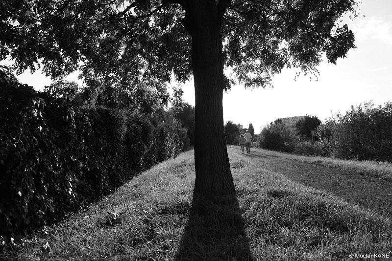 Le long du canal de Chelles, photographié avec l'Olympus OM-D E-M1 Mark II, 2017, Ph. Moctar KANE.