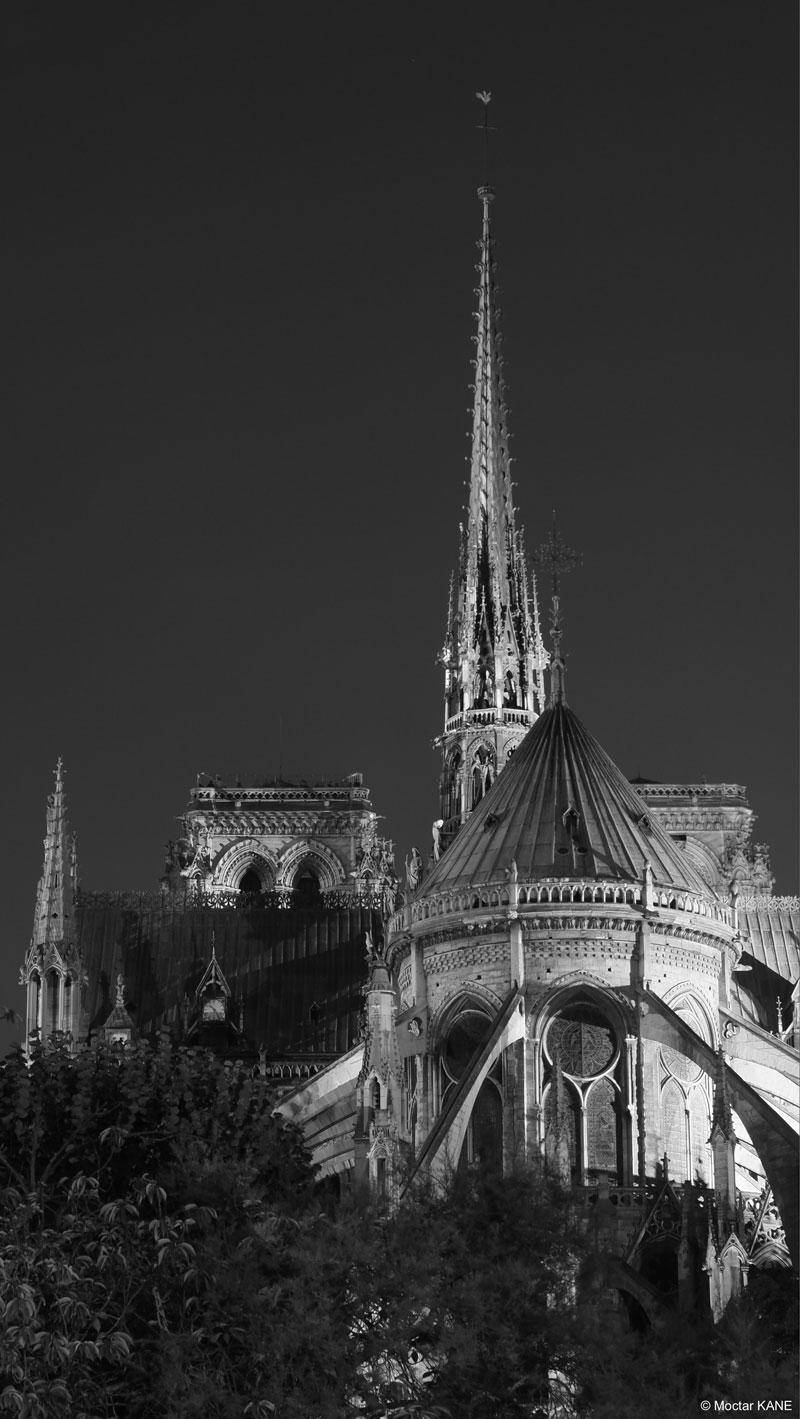 La cathédrale Notre-Dame, photographiée avec l'Olympus OM-D E-M1 Mark II, 2017, Paris, 2017, Ph. Moctar KANE.