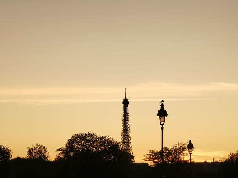 La Tour Eiffel aux alentours du crépuscule, au Huawei P30 Pro, Paris, 2019, Ph. Moctar KANE.