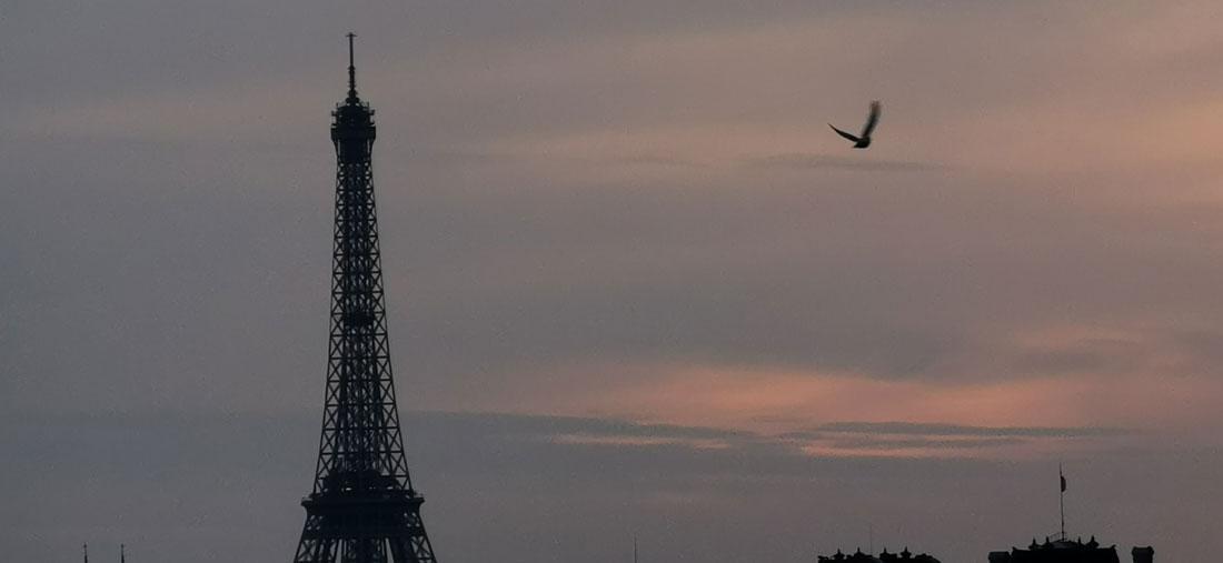 La Tour Eiffel, photographiée avec le smartphone HuaweiP30 Pro, 2019, Ph. Moctar KANE.