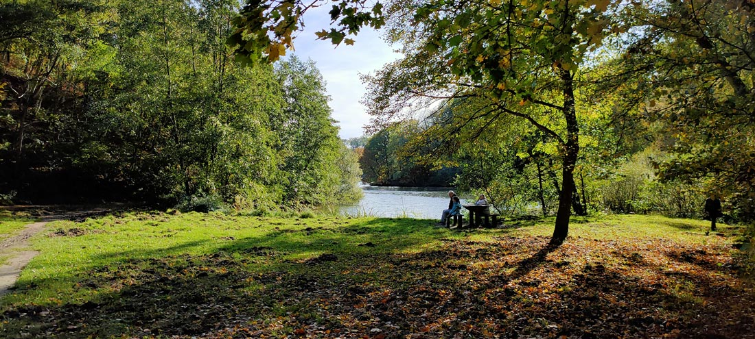 Abords de l'étang du Moulin à Renard, photographié avec l'Oppo Reno2, Guyancourt, 2019, Ph. Moctar KANE.